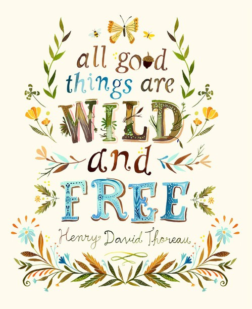 All-Good-Things-Are-Wild-And-Free